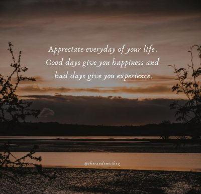 Appreciate Everything In Life Quotes