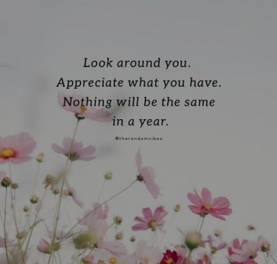 Appreciate the Little Things In Life Quotes