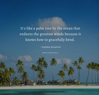 Palm Tree Inspirational Quotes