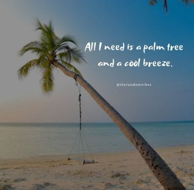 Palm Tree Quotes