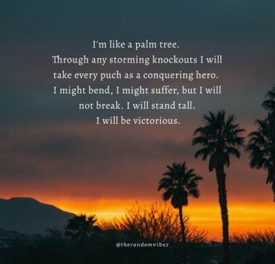 Palm Tree Quotes Images