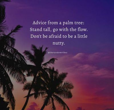 Palm Tree Quotes Wallpaper