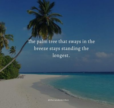 Palm Tree Strength Quotes