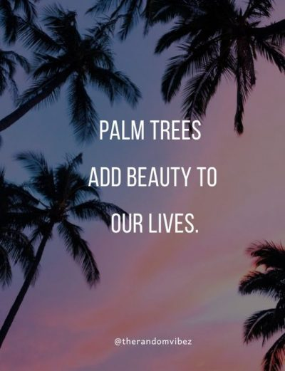 Short Palm Tree Quotes