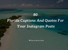 80 Florida Captions And Quotes For Your Instagram Posts