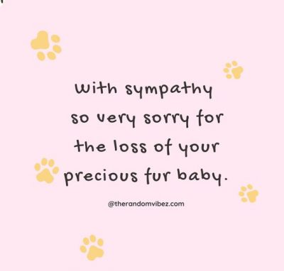 Comforting Words for Loss of Pet