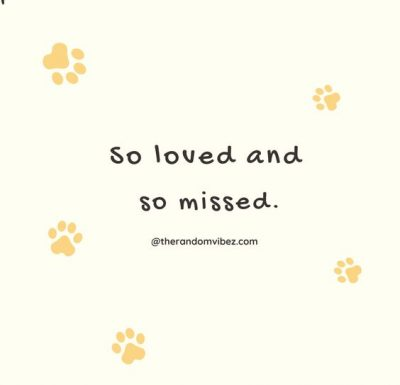 Grieving Quotes For Loss Of Dog