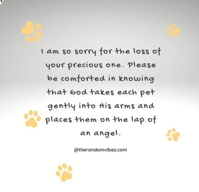 Loss Of A Loved Pet Quotes
