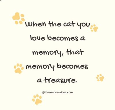 Sympathy Quotes for Loss Of pet