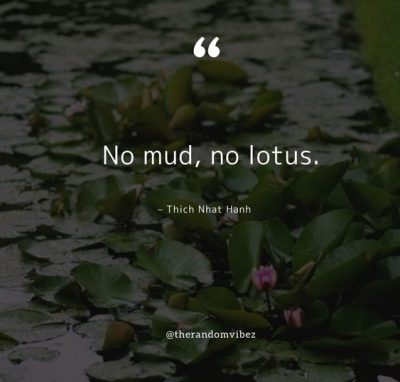 Lotus Flower Quotes Images