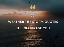 60 Weather The Storm Quotes To Encourage You