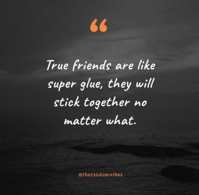 Funny Best Friends Stick Together Quotes