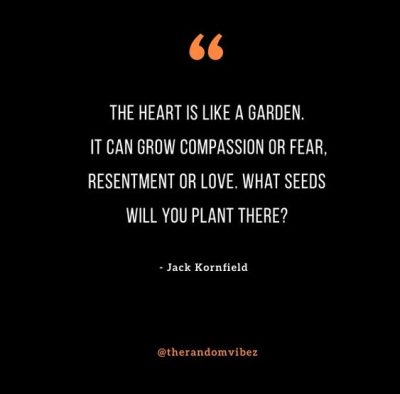 Jack Kornfield Heart Quotes