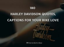 180 Harley Davidson Quotes, Captions For Your Bike Love