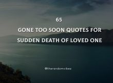 65 Gone Too Soon Quotes For Sudden Death Of Loved One