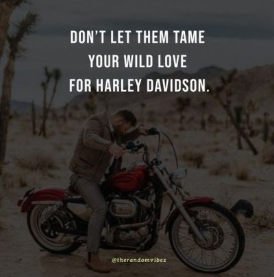Harley Motorcycle Quotes