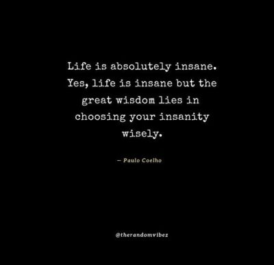Quotes About Being Insane
