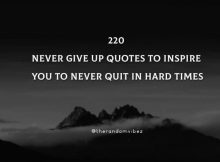 220 Never Give Up Quotes To Inspire You To Never Quit In Hard Times