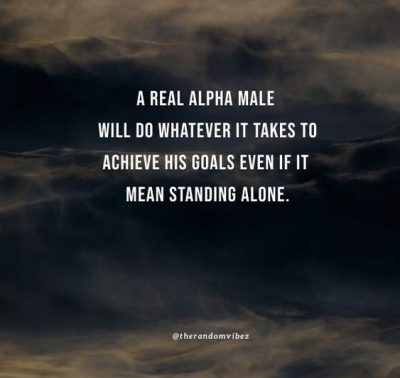 Alpha Male Quotes Images