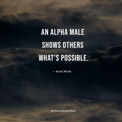 Alpha Male Quotes On Success
