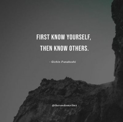 Knowing Oneself Quotes