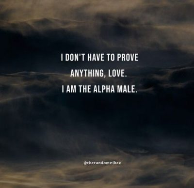 Relationship Alpha Male Quotes