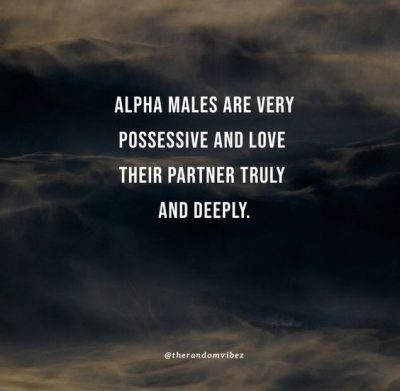 alpha male love quotes