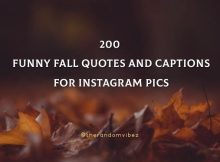 200 Funny Fall Quotes And Captions For Instagram Pics