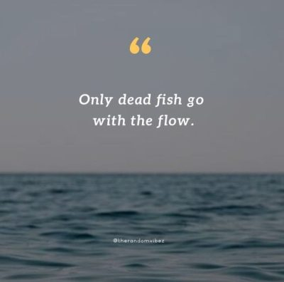 dead fish go with the flow quotes